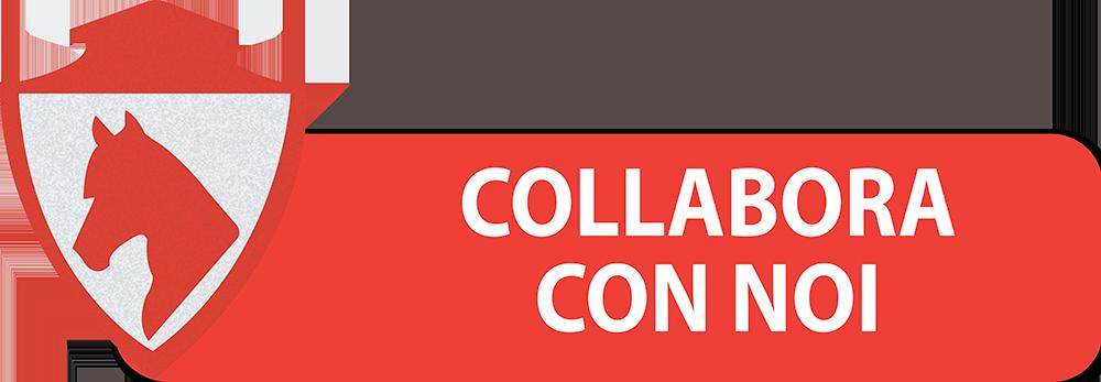 COLLABORA-CON-NOI