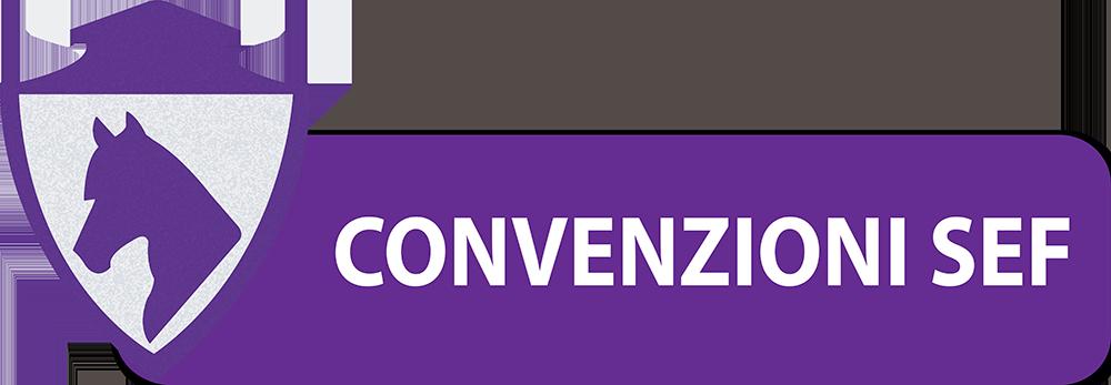 CONVENZIONI-SEF