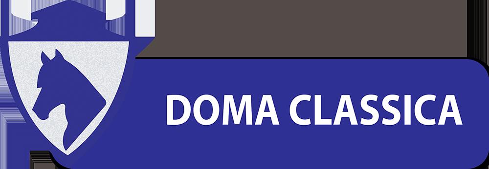 PULSANTI-SITO-DIPARTIMENTI-SEF-ITALIA-DOMA-CLASSICA