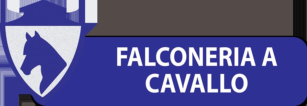PULSANTI-SITO-DIPARTIMENTI-SEF-ITALIA-FALCONERIA-A-CAVALLO