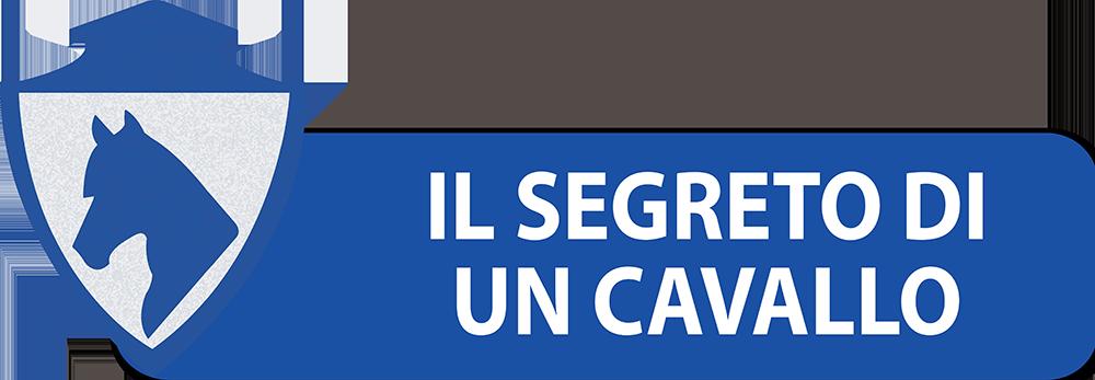 PULSANTI-SITO-DIPARTIMENTI-SEF-ITALIA-IL-SEGRETO-DI-UN-CAVALLO