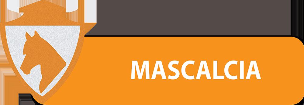 PULSANTI-SITO-DIPARTIMENTI-SEF-ITALIA-MASCALCIA