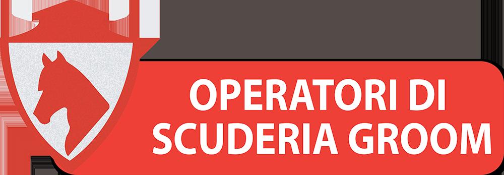 PULSANTI-SITO-DIPARTIMENTI-SEF-ITALIA-OPERATORI-DI-SCUDERIA-GROOM