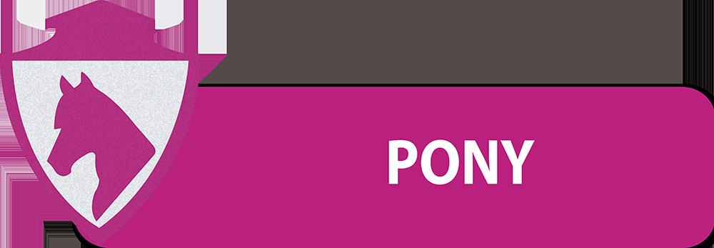 PULSANTI-SITO-DIPARTIMENTI-SEF-ITALIA-PONY