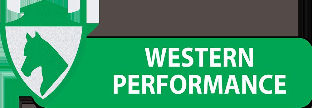 PULSANTI-SITO-DIPARTIMENTI-SEF-ITALIA-WESTERN-PERFORMANCE