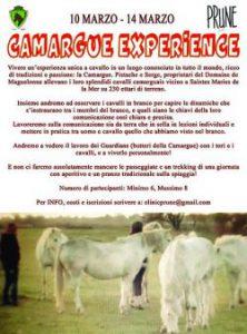camargue_experience-piccola-50711df2