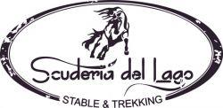 logo-scuderia-25c09eab