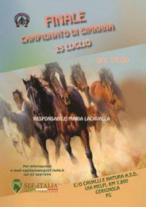 finale-campionato-gimkana-e3813329