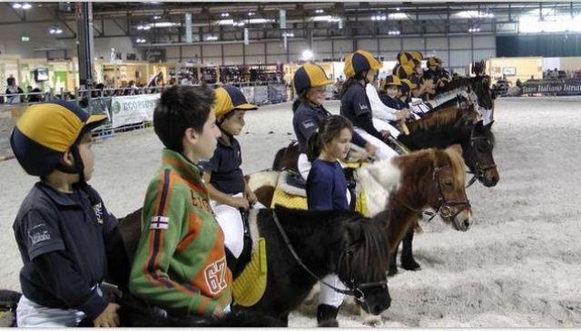 pony1-d2afb643