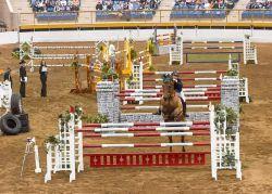 combinations_horse-f51fc46c