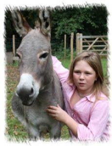 donkey_child-96f9666d