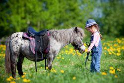 giovanigenitori-un-po-di-pony-c30654bb