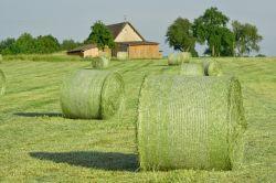 hay-bales-502949_640-a329884d