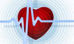 heart-665186_640-5af49dfb