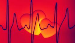 heart-799138_640-ed0f6cbb
