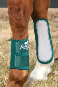 horse_boots_protections_-752b306a