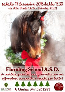floriding-school-asd_locandina-natale