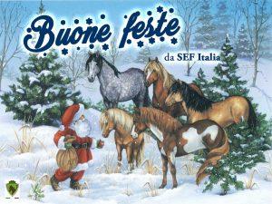 babbo-natale-con-cavallo-copia