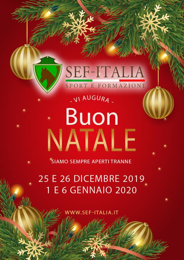 Buon Natale Italia.Sef Italia Vi Augura Un Buon Natale Sef Italia
